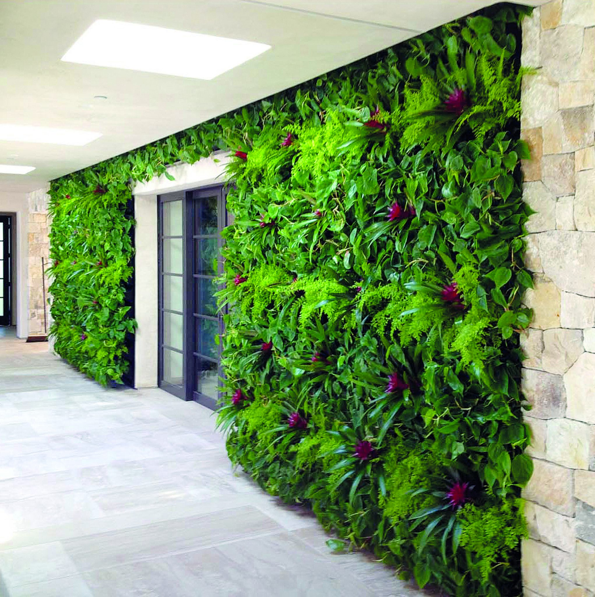 NextGen Living Walls