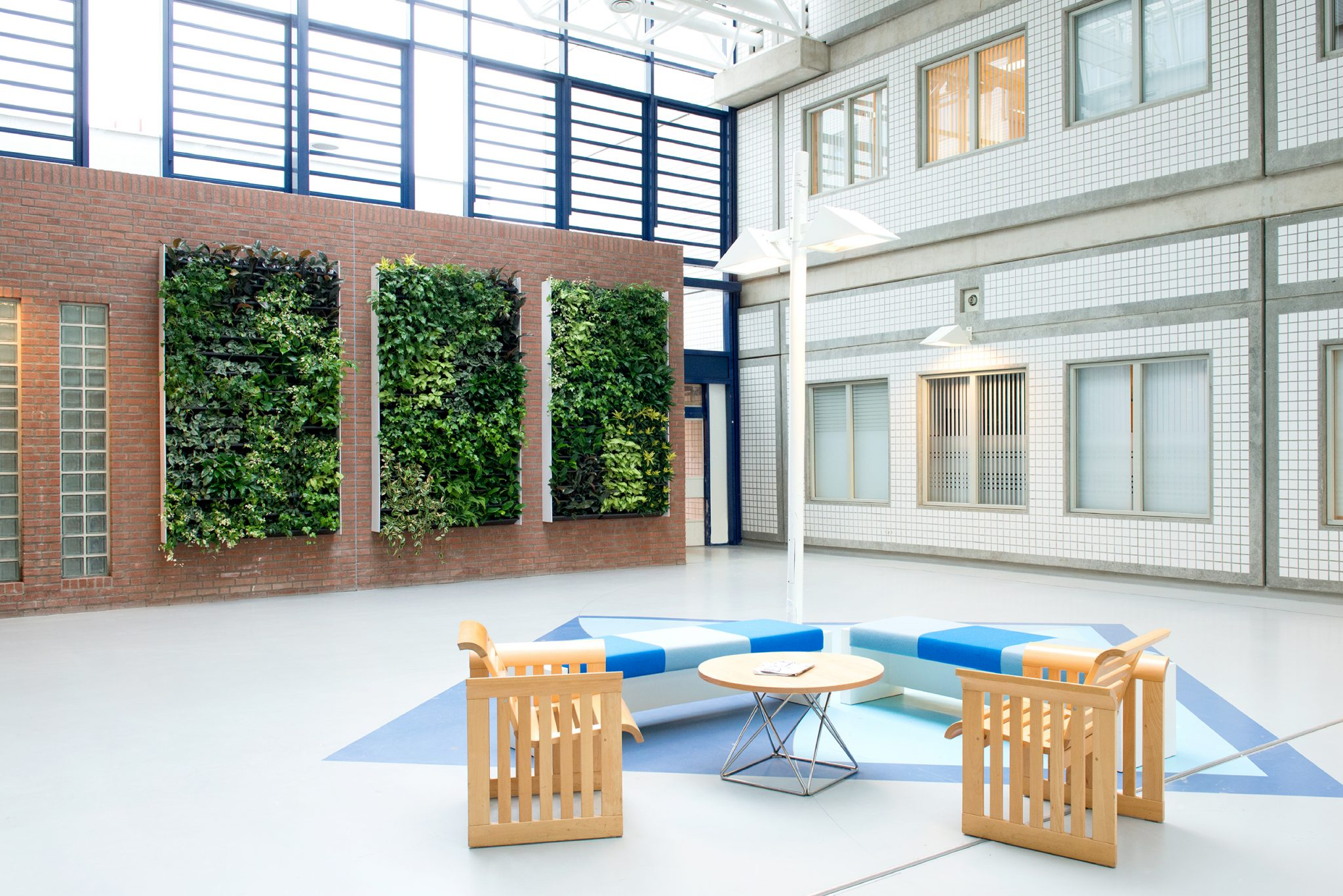 NextGen Living Walls Can Be Used Both Indoor And Outdoor Simply Install Plant Water Enjoy The Beauty Of System