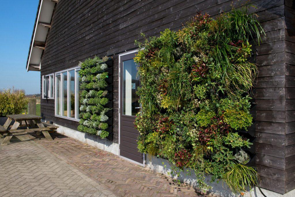 Nextgen living wall outdoor 80 nextgen living walls - How to make a living wall ...