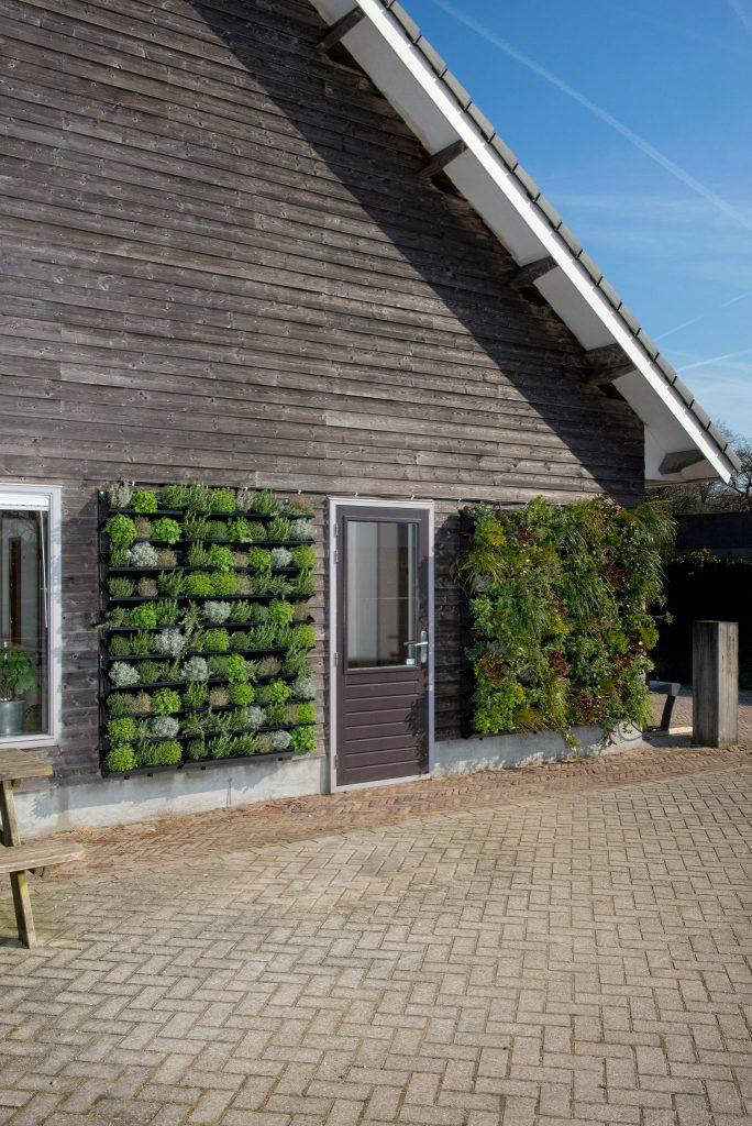 Nextgen living wall outdoor 83 nextgen living walls for Living outdoor wall