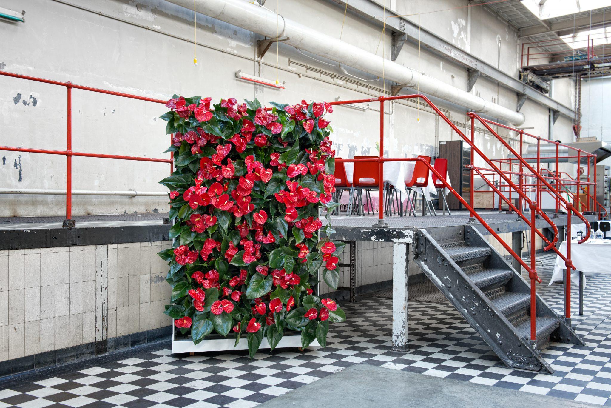 NextGen Living Walls Raumteiler - NextGen Living Walls